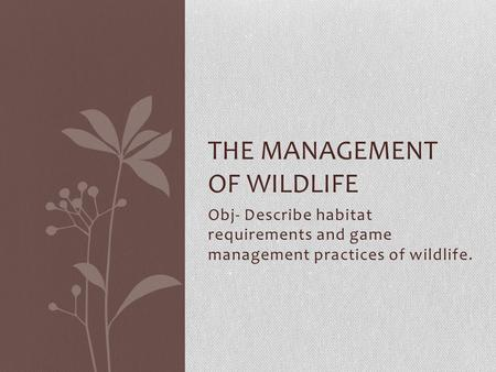 Obj- Describe habitat requirements and game management practices of wildlife. THE MANAGEMENT OF WILDLIFE.