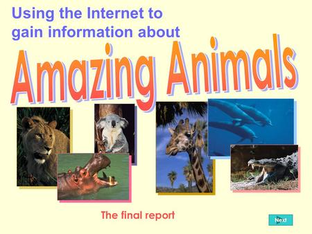 Using the Internet to gain information about Next The final report.