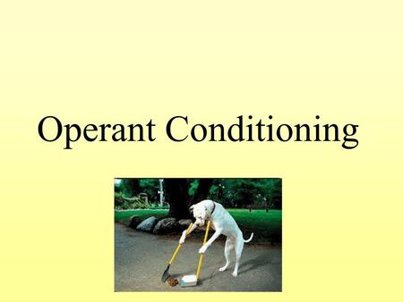 an overview of behavioral conditioning The term operant was used by skinner in order to give us a good overview of  his theory by this term, he meant that this type of conditioning involves only.