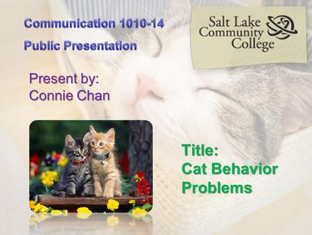 Title: Cat Behavior Problems Present by: Connie Chan.