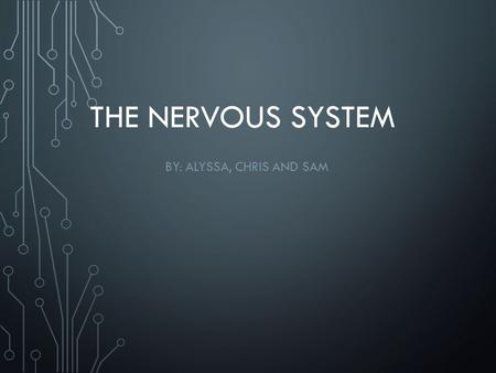 THE NERVOUS SYSTEM BY: ALYSSA, CHRIS AND SAM. THE ROLE THAT THE NERVOUS SYSTEM PLAYS IN THE HUMAN BODY The nervous system plays a big role in the human.