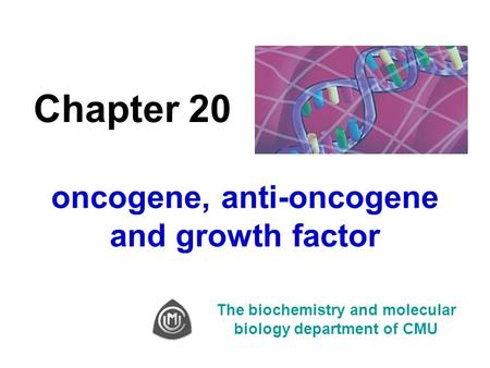Chapter 20 oncogene, anti-oncogene and growth factor The biochemistry and molecular biology department of CMU.