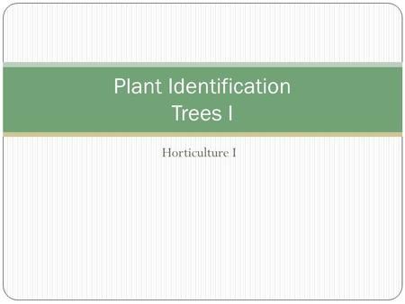 Plant Identification Trees I