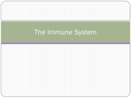 The Immune System. Immune System Our immune system is made up of: The innate immune system: first line of defence (non-specific) The adaptive immune system: