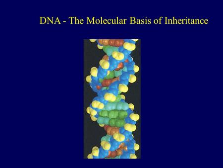 DNA - The Molecular Basis of Inheritance. James D. Watson & Francis H. Crick In 1953 presented the double helix model of DNA Two primary sources of information: