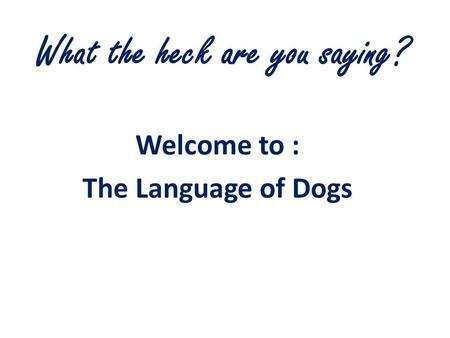What the heck are you saying? Welcome to : The Language of Dogs.