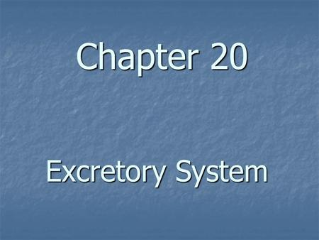 Chapter 20 Excretory System. Excretory System – Structure & Function A. The body system that collects and removes the waste products (urea, salts, uric.