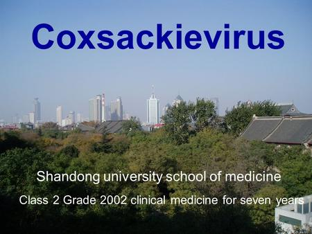 Coxsackievirus Shandong university school of medicine Class 2 Grade 2002 clinical medicine for seven years.