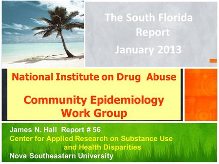 The South Florida Report January 2013 National Institute on Drug Abuse Community Epidemiology Work Group James N. Hall Report # 56 Center for Applied Research.