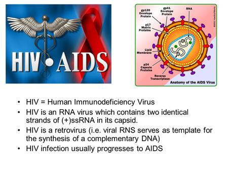 HIV = Human Immunodeficiency Virus HIV is an RNA virus which contains two identical strands of (+)ssRNA in its capsid. HIV is a retrovirus (i.e. viral.