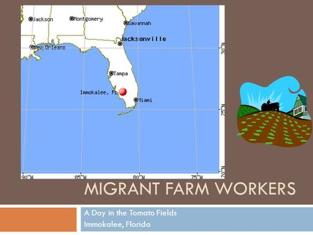 MIGRANT FARM WORKERS A Day in the Tomato Fields Immokalee, Florida.