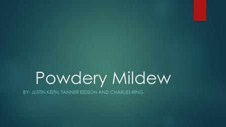 Powdery Mildew BY: JUSTIN KEITH, TANNER EIDSON AND CHARLES RING.