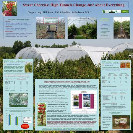 Sweet Cherries: High Tunnels Change Just About Everything Gregory Lang, Bill Shane, Phil Schwallier, Rufus Isaacs, MSU MSU High Tunnel Cherry Project Tree.