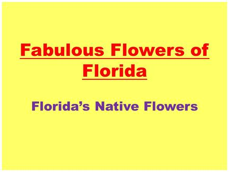 Fabulous Flowers of Florida Florida's Native Flowers.