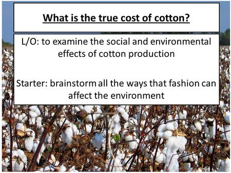 What is the true cost of cotton? L/O: to examine the social and environmental effects of cotton production Starter: brainstorm all the ways that fashion.