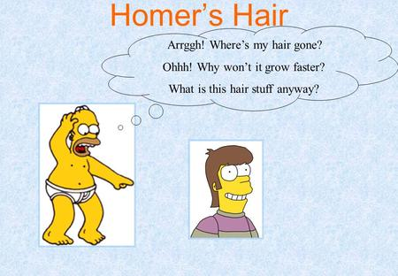 Homer's Hair Arrggh! Where's my hair gone? Ohhh! Why won't it grow faster? What is this hair stuff anyway?