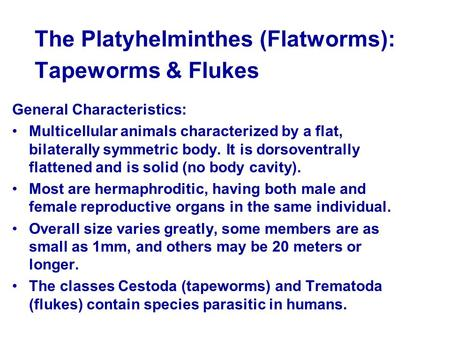 The Platyhelminthes (Flatworms): Tapeworms & Flukes General Characteristics: Multicellular animals characterized by a flat, bilaterally symmetric body.