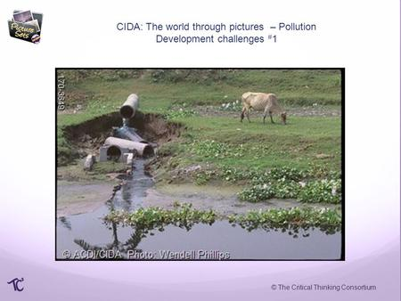© The Critical Thinking Consortium CIDA: The world through pictures – Pollution Development challenges # 1.