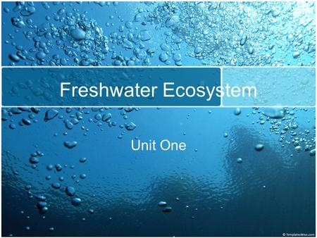 Freshwater Ecosystem Unit One. What is a freshwater ecosystem? Only 3% of the world's water is fresh. Freshwater is either frozen in glaciers and pack.
