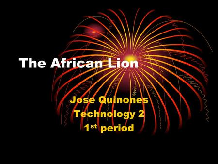 The African Lion Jose Quinones Technology 2 1 st period.