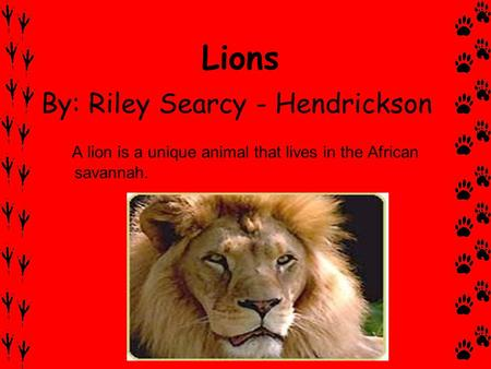 Lions By: Riley Searcy - Hendrickson A lion is a unique animal that lives in the African savannah.