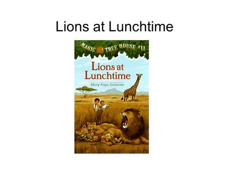 Lions at Lunchtime.