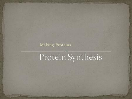 Making Proteins Cell Structure (80% of cell membrane is proteins) Transport Channels Cell Processing Hormones (signals) Enzymes What else?