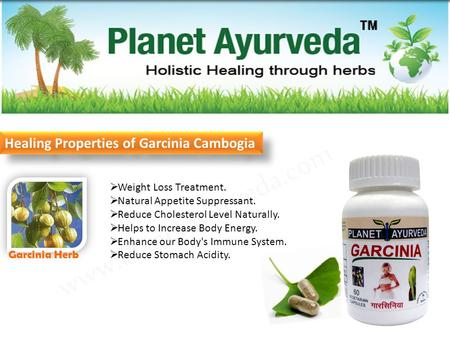  Weight Loss Treatment.  Natural Appetite Suppressant.  Reduce Cholesterol Level Naturally.  Helps to Increase Body Energy.  Enhance our Body's Immune.