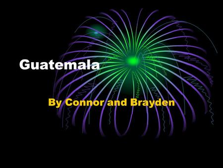 Guatemala By Connor and Brayden. Wildlife and Plants Some animals of Guatemala include: the Maya mouse, Guatemalan brown bat, deer mouse, and the quetzal.