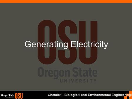Chemical, Biological and Environmental Engineering Generating Electricity.