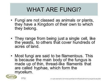 FF16 All rights reserved for commercial use © Stephanie Roberts & British Mycological Society 2005 WHAT ARE FUNGI? Fungi are not classed as animals or.