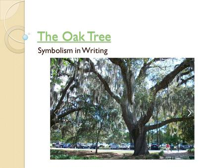 The Oak Tree Symbolism in Writing.