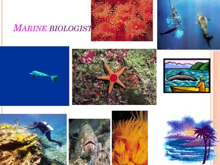 M ARINE BIOLOGIST. ..F ACTS PAGE.. 1-In Western Australia, there are approximately 50 marine biologists. 2-While 79% of marine biologists are male, it's.