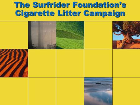 The Surfrider Foundation's Cigarette Litter Campaign.