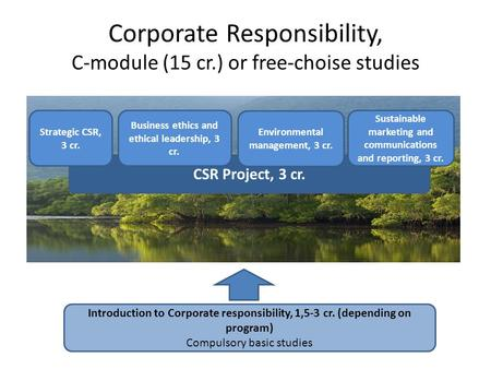 CSR Project, 3 cr. Corporate Responsibility, C-module (15 cr.) or free-choise studies Introduction to Corporate responsibility, 1,5-3 cr. (depending on.