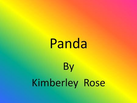 Panda By Kimberley Rose.