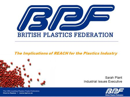 The Implications of REACH for the Plastics Industry Sarah Plant Industrial Issues Executive.