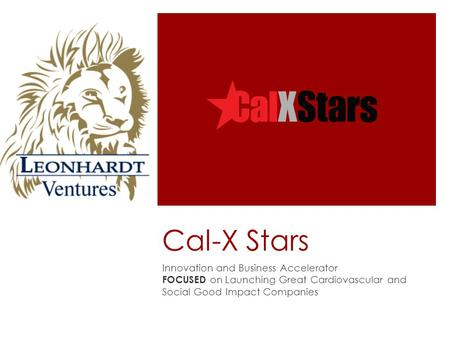 Cal-X Stars Innovation and Business Accelerator FOCUSED on Launching Great Cardiovascular and Social Good Impact Companies.