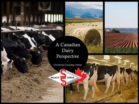 A Canadian Dairy Perspective ~ Christina Crowley-Arklie.