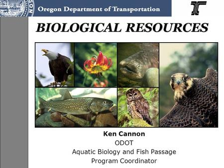 BIOLOGICAL RESOURCES Ken Cannon ODOT Aquatic Biology and Fish Passage Program Coordinator.