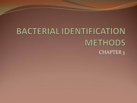 CHAPTER 3. Content purification of cultures morphological and pureculture studies biochemical tests.