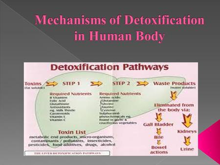  The human body has four main excretory pathways that remove environmental toxins (exogenous toxins), as well as toxic prod­ucts produced by the body.
