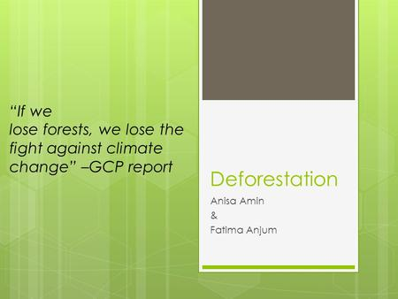 "Deforestation Anisa Amin & Fatima Anjum ""If we lose forests, we lose the fight against climate change"" –GCP report."