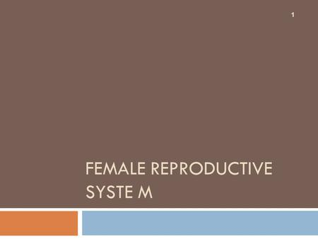Female reproductive syste M