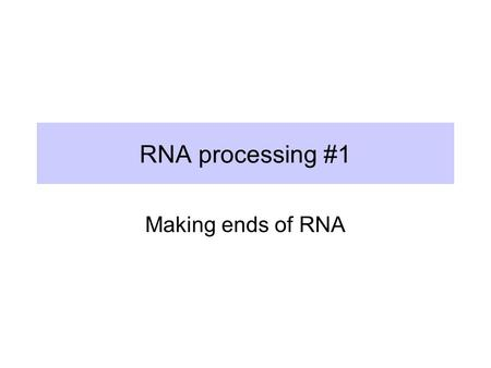 RNA processing #1 Making ends of RNA.