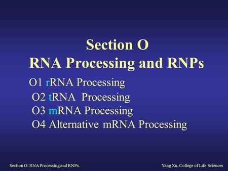 Section O RNA Processing and RNPs O1 rRNA Processing O2 tRNA Processing O3 mRNA Processing O4 Alternative mRNA Processing Section.