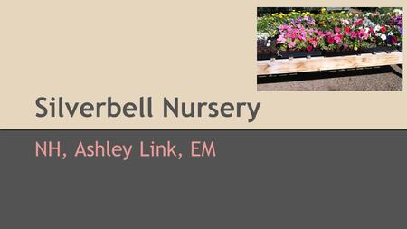 Silverbell Nursery NH, Ashley Link, EM. Introduction Silverbell Nursery 2730 North Silverbell Road We chose this location because it is a mile away from.