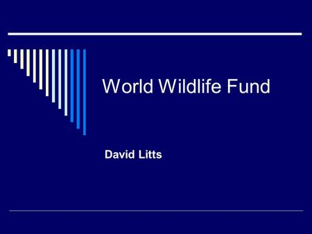 World Wildlife Fund David Litts. What Does WWF Do?  From our start in 1961, WWF has worked to protect endangered species.
