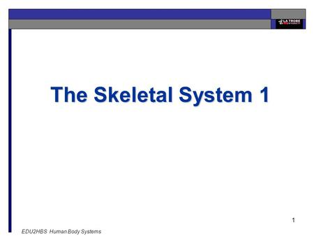 EDU2HBS Human Body Systems 1 The Skeletal System 1.