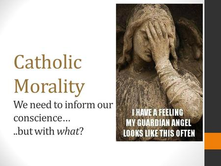 Catholic Morality We need to inform our conscience…..but with what?